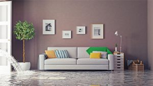 water damage repair calvert county