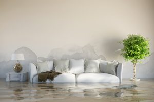 water damage calvert county, water damage cleanup calvert county